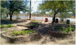 Raised-bed gardens at YouthWorks Charter High School